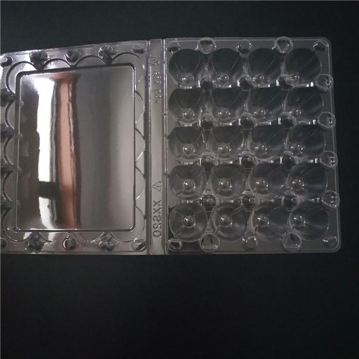 20 Cells Quail Eggs Container
