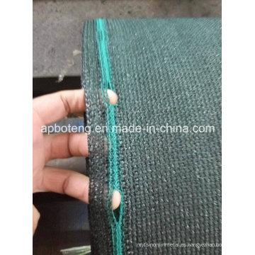 Red plana de la cortina del verde de la alta calidad del alambre