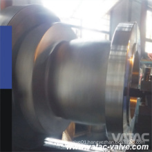 Cast Ss Ss304/Ss316/Ss304L/Ss316L RF Flanged Non Slam Check Valve
