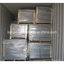 Hot-DIP Galvanized Welded Wire Mesh Panel (HPZS5006)