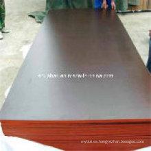 Contrachapado de Concreto Plywood Marrón Película WBP Pegamento Núcleo de álamo