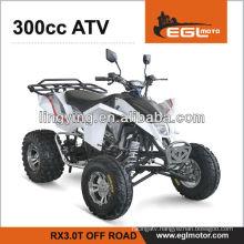 EEC ATV QUAD 300CC (EGLMOTOR)