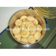 Conservas de cogumelos em lata com alta qualidade