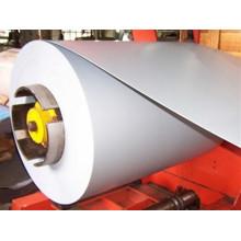 Prepainted Galvanized Steel in Coil, PPGI