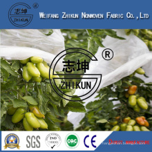 PP Spunbond Non-Woven Fabric Used for Afforestation