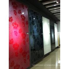 Folha acrílica da porta do armário lustroso (tamanho padrão)