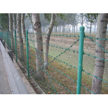PVC Coated Barbed Wire PE Barbed Wire
