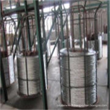 Fil électrique en alliage d'aluminium de zinc de câble enduit