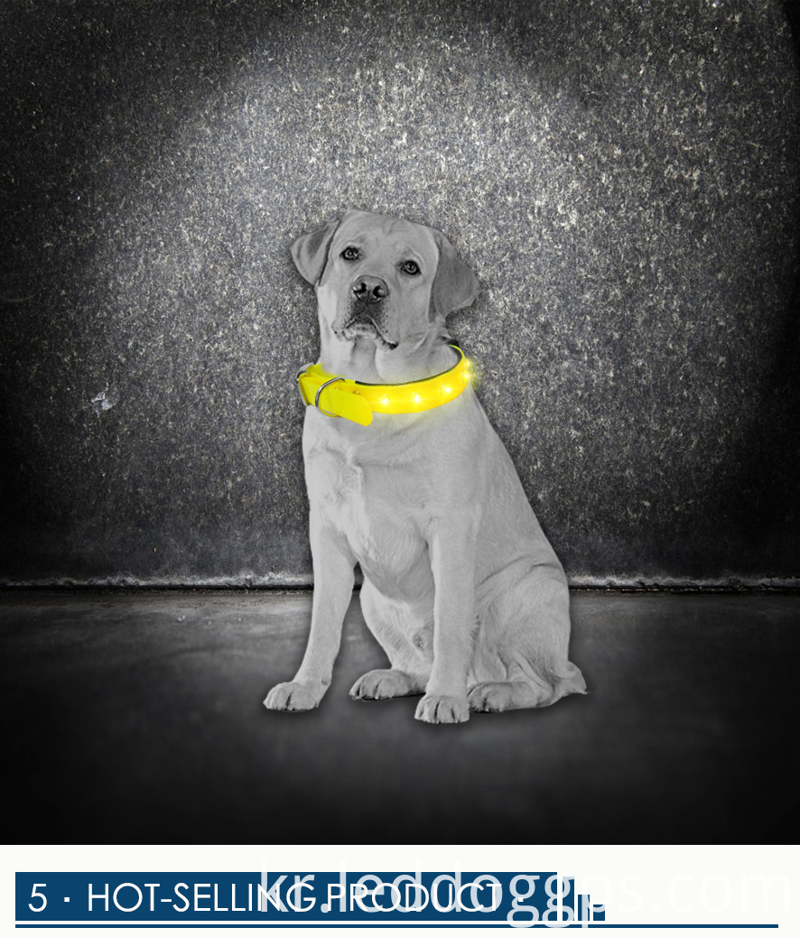 Tpu Led Light Dog Collar