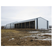 China Prefab Shed Steel Structure Warehouse Plant Frame Steel Buildings Hangar