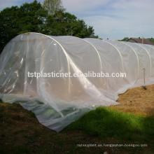 invernaderos poli túneles cubierta para la venta
