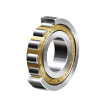 Single Row Cylindrial Roller Bearings NJ1000 Series