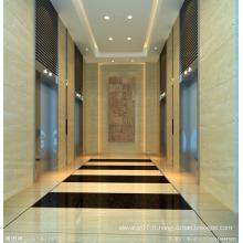 Résidentiel / maison / bureau / bâtiment / hôtel Passagers Ascenseur
