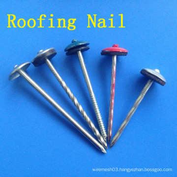 Colorful Roofing Nail with Umbrella Head