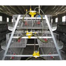 equipos automáticos de granja avícola de pollos de engorde
