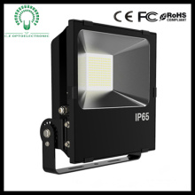 10W/20W/30W/50W LED Floodlight with Ce and RoHS