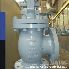 Flange RF Angle Type Sdnr (Screw Down Non Return) Valve