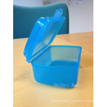 Boîte en plastique en PVC moulée personnalisée (HBPLB-2)