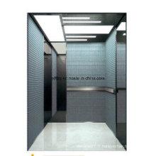 Fujizy Passenger Elevator Prix en Chine
