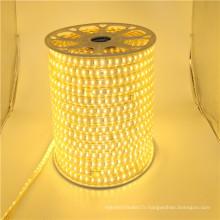 Lumières menées de bande menées dimmable de la puissance élevée 110v 220v, bande menée 50m, bande menée flexible