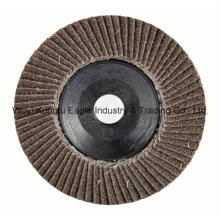 Heated Aluminum Oxide with Plastic Cover Flap Disc