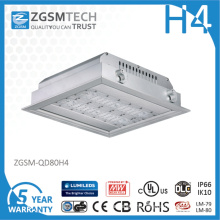Zgsm 80W LED Gas Station Lights 40W-200W LED Ceiling Lights