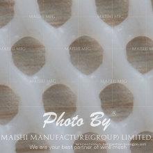 clôtures en maille en plastique blanc populaire