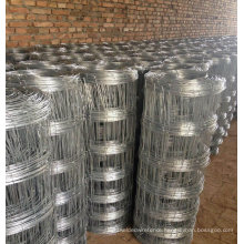 Hot Dipped Galvanized Horse and Sheep Wire Mesh Fence