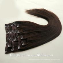 clip de qualité d'approvisionnement de beauté chaude dans les extensions de cheveux humains