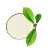 China OEM Probiotic GMP Factory 200 billion Probiotic Bulk lactobacillus casei  Probiotic Powder for Belgium