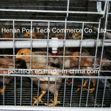 Новая клетка для цыплят-бройлеров для куриной фермы (рама)