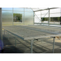 Agriculture Seed Bed for Vegetable Greenhouse