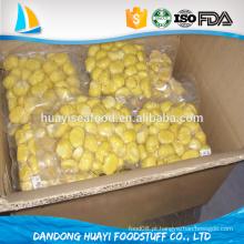 Orgânicos congelados castanha kernel snack food do fornecedor chinês