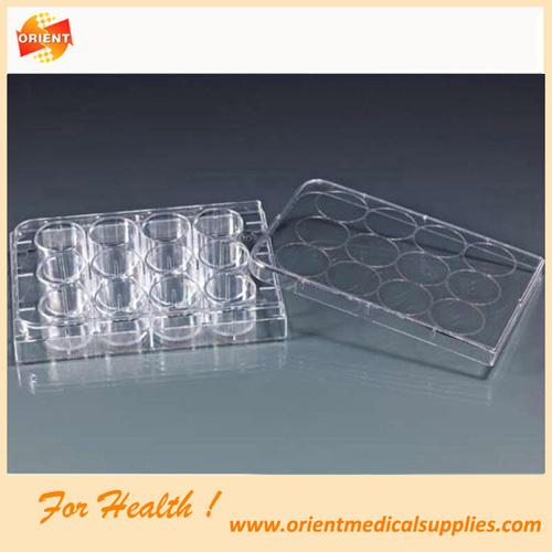 12well tissue culture plate