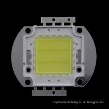 La puissance intégrée de la puce 20W LED et le type élevé de la puissance LED ont mené 20w