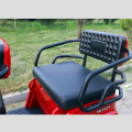 Leisure Scooter Passenger Electric Tricycle for sale