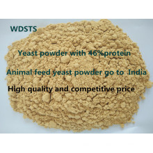 Animal Yeast Powder for Fodder Poultry Feed