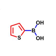 2-Thiopheneboronic acid CAS 6165-68-0
