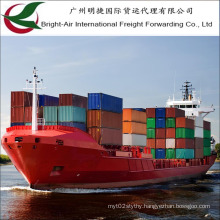 """Ocean Shipping Forwarder Sea Freight 20""""/40"""" Container From China to Worldwide"""