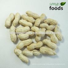 Organic peanut inshell manufactors