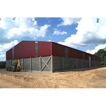 Agricultural Grain Storage Steel Structure Warehouse (KXD-pH9)