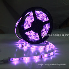 12V 5050SMD Waterproof RGB LED Strip