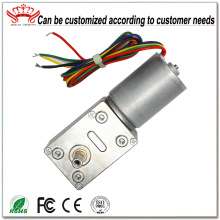 24V Brushless Dc Motor With Worm Gearbox