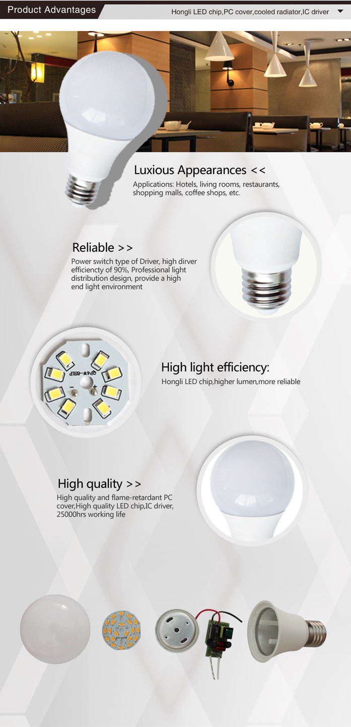 A60-5W LED Globe Bulbs