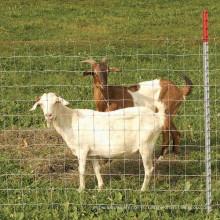 Пастбища Забор/Садовые Ограждения/Ханге Совместный Забор
