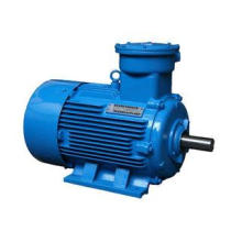 Three Phase Asynchronous Motor Electric Explosion Proof Mot