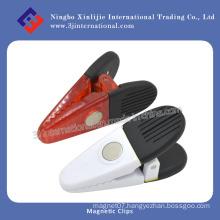 Office/ Fridge/ AlNiCo/Neo/Neodymium/Round/ Ball/Ceramic/Packed Magnet