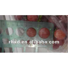 Super Red grapes fruits