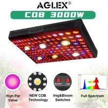 Plantas de interior con bombilla LED de luz de crecimiento de espectro completo