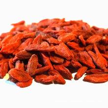 ningxia factory wholesale bulk nutrients dried organic goji berries